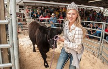 Youth benefit by showing livestock, participating in auction at U.P. State Fair