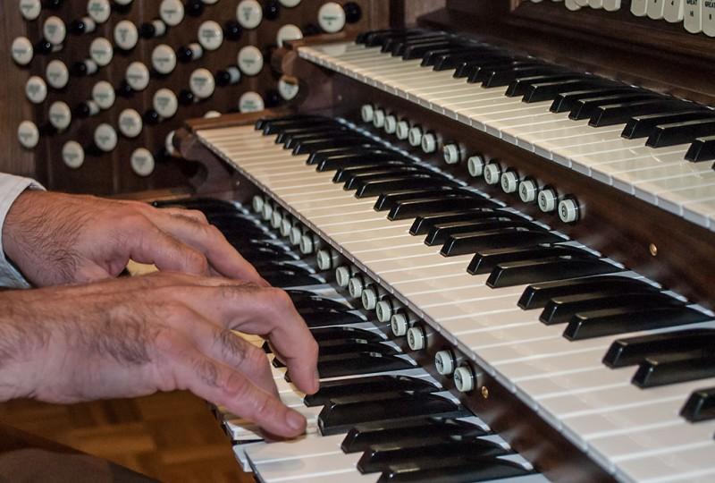 Organ_0020