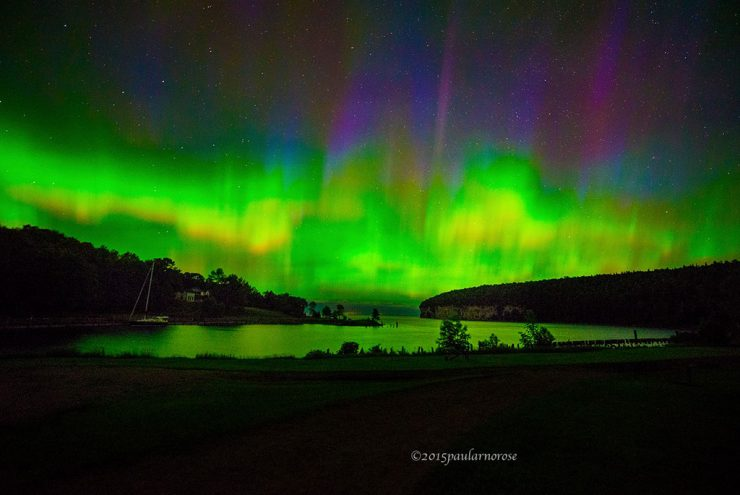 Rose captures Northern Lights over Fayette State Park