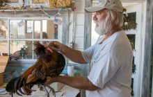 Poultry returns to U.P. State Fair after last year's ban