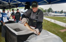 Bays de Noc welcomes Cabela's National Walleye Tour anglers