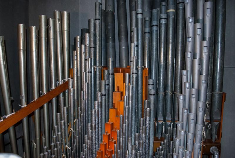 Organ_0031