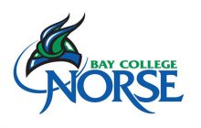 Bay College unveils new team name and logo