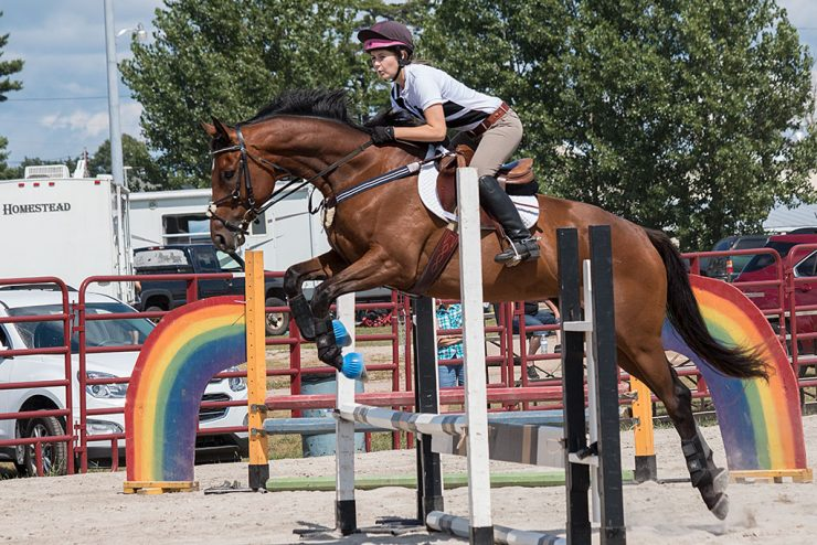 Horse jumpers at U.P. State Fair say passion is needed to compete